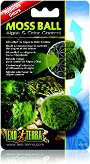 Exo Terra Moss Ball Clarity and Odour Control