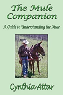 Best the mule online Reviews