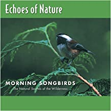 Best morning sounds mp3 Reviews