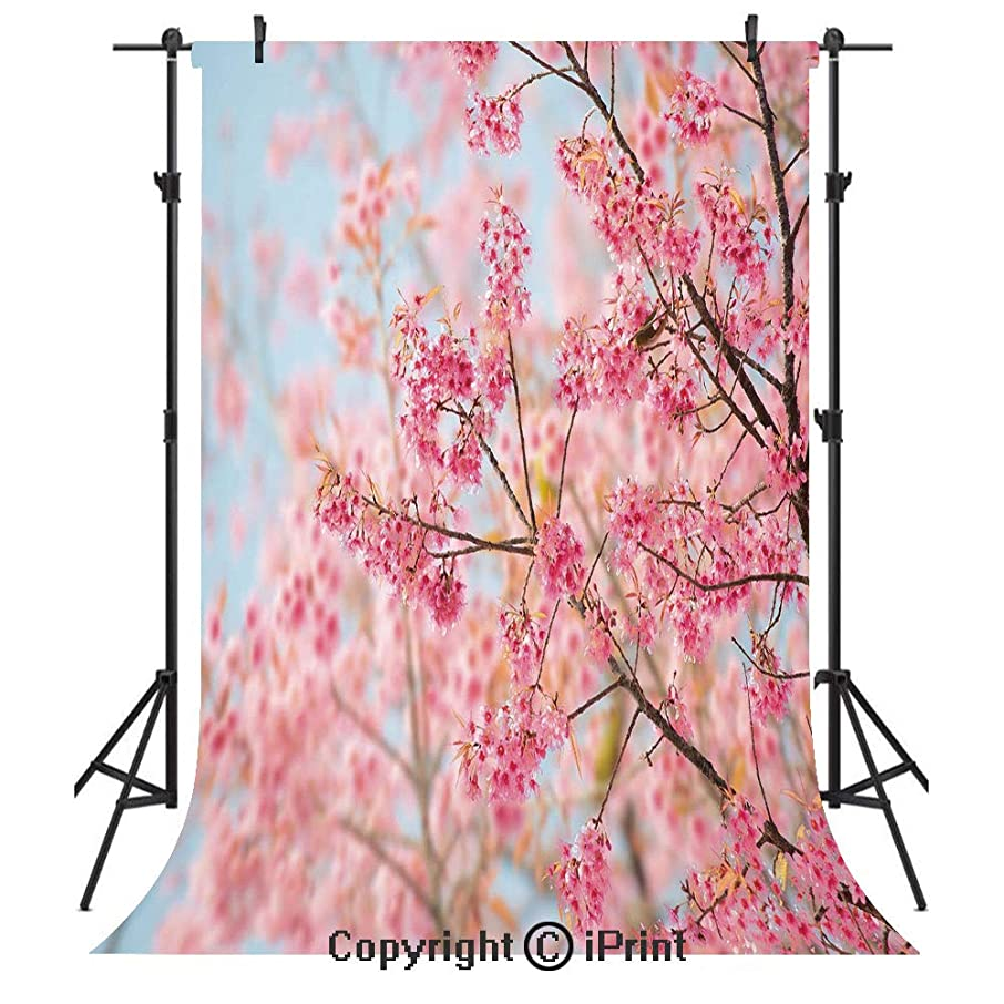 Floral Photography Backdrops,Japanese Sakura Cherry Blossom Branches Full of Spring Beauty Picture,Birthday Party Seamless Photo Studio Booth Background Banner 3x5ft,Light Pink Baby Blue