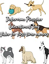 Doberman Pinscher Educational Dog Video for first time owners