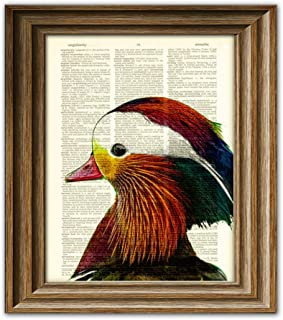 Mandarin Duck Colorful Birds Illustration Beautifully Upcycled Dictionary Page Book Art Print