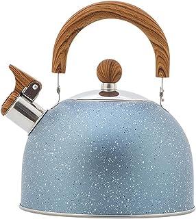Nieuwe stijl spray kleur en fluitketel 2.5L grote capaciteit Europese stijl keukengerei fluitketel