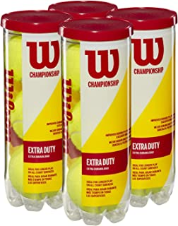 Wilson Championship Regular and Extra Duty Tennis Balls