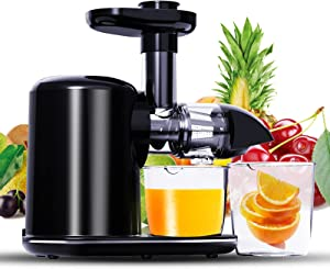 Juicer Machines,RACCOON Slow Masticating Juicer, Cold Press Juicer Extractor with Reverse Function, Quiet Motor, Easy to Clean with Brush, BPA-Free, Juice Recipes for Vegetables and Fruits, Classic Black