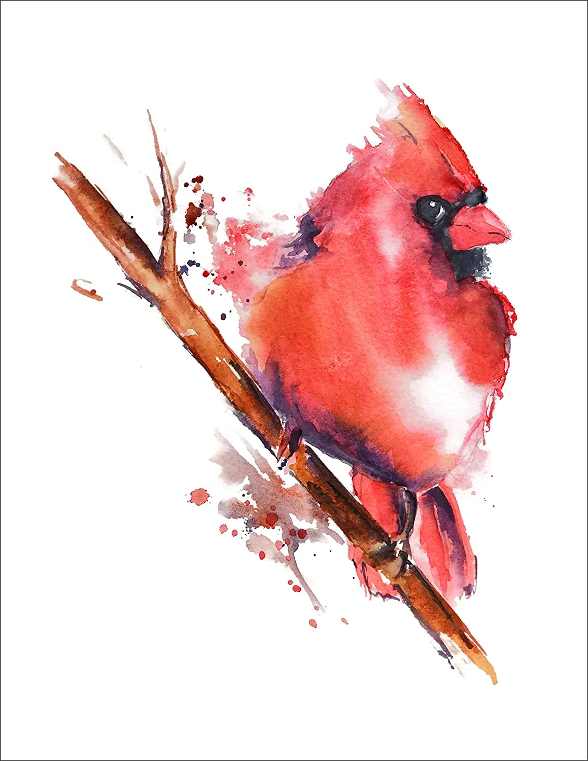 Cardinal All items in the store Watercolor Art Print Reservation by Nancy Knight Painti