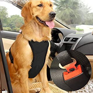 Best car harness for large dogs Reviews