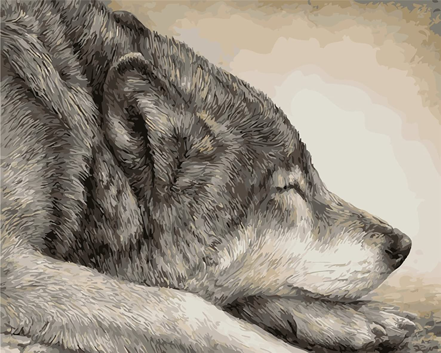 YEESAM Art New DIY Paint by Number Kits for Adults Kids Beginner - Sleeping Wolf 16x20 inch Linen Canvas - Stress Less Number Painting Gifts (with Frame)