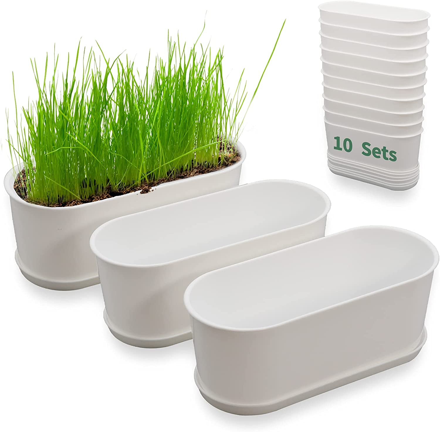 Plant Window Box with Saucers 10 Sets Plastic Planters with Multiple Drainage Holes and Trays Flower Pots for Home Garden Succulents Modern Decorative Window Planter Box Gardening Pot Plant Container