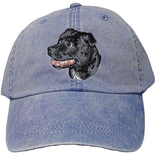 Bull Terrier Supplies: Amazon com