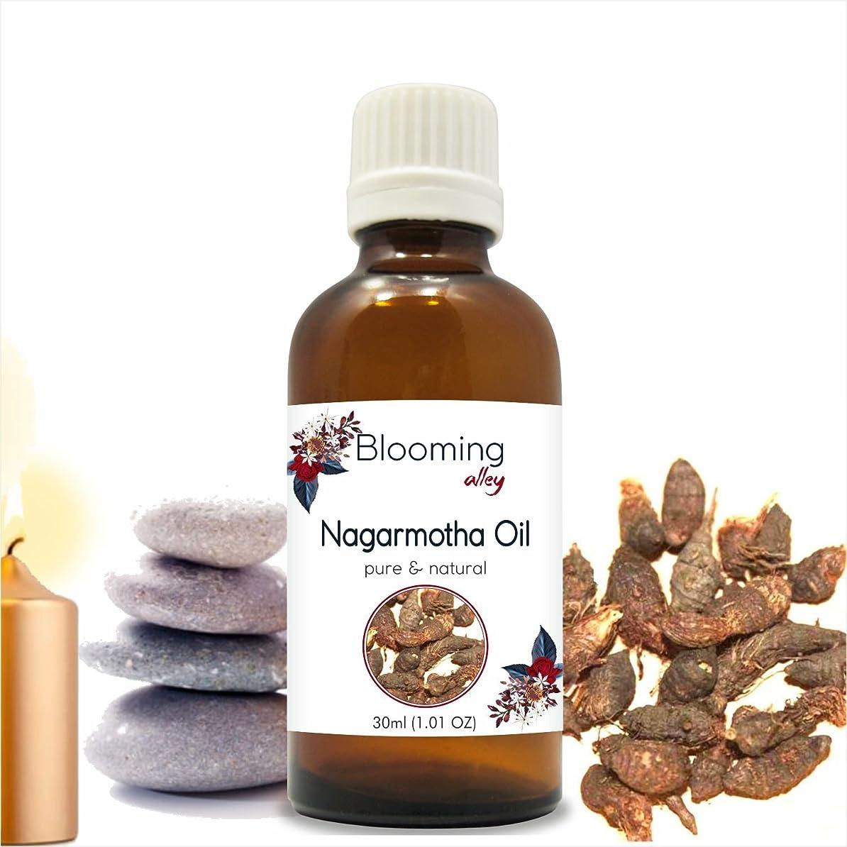 美徳地質学イヤホンNagarmotha Oil(Cyprus Scariosus) Essential Oil 30 ml or 1.0 Fl Oz by Blooming Alley