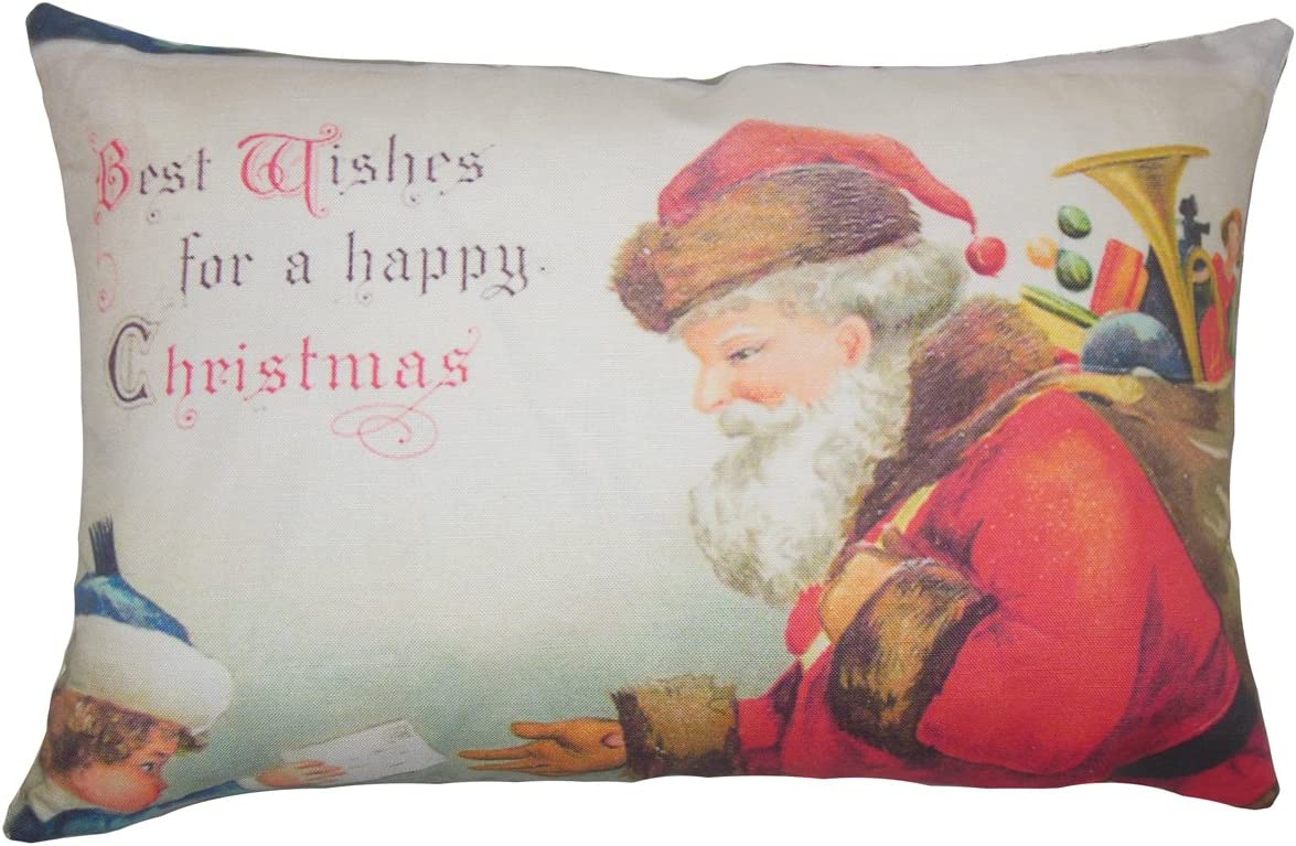 Surprise price The Pillow Collection Set of 2 Holid Large special price !! x Down Filled 18