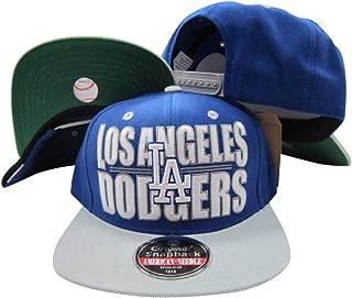 Los Angeles Dodgers Block Two Tone Plastic Snapback Adjustable Plastic Snap Back Hat/Cap