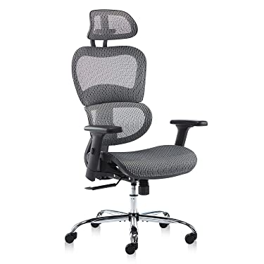 Office Chair, Ergonomics Mesh Chair Computer Chair Desk Chair High Back Chair w/Adjustable Headrest and Armrests - Grey