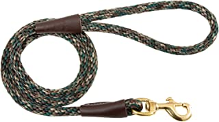 brass dog leash hardware