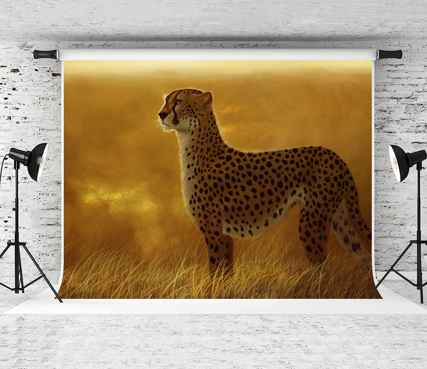 ZOANEN Photography Free shipping anywhere in the nation Background A Cheetah Savannah The on National products African