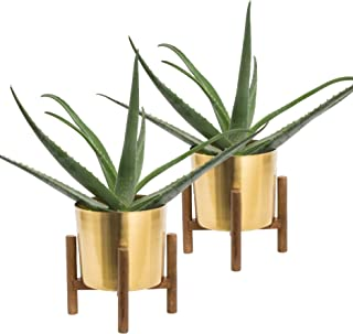 Set of 2 Mid Century Brass Plated Gold Planter with Stand, 7 Inch Large Metal Pot with Mango Wood Stand, Modern Flower Pot Decor for Living Room, Orchid, Aloe, Succulents & Large Cactus Plants, Indoor