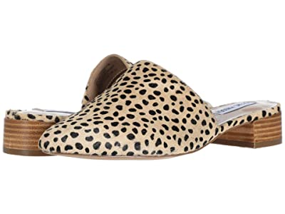 Steve Madden Cairo-L Flat (Cheetah) Women