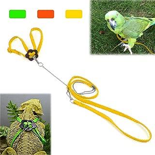 Mokook Adjustable Harness Leash for Parrot African Grey Cockatoo Macaw Ringneck Parakeet Cockatiel and Reptile Lizard Outdoor Walk, Adjustable and Bite Resistant Design, 3.9FT/1.2M