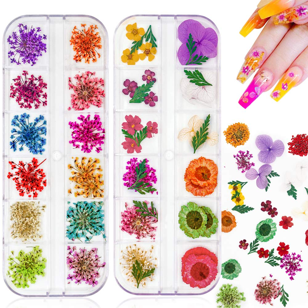 JOYJULY 2 Boxes Dry Chicago Mall Flowers for unisex Flow 24 Nails Colors Nail Dried