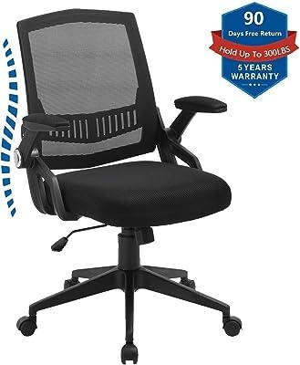 Amazon Com Ergohuman Ergonomic Executive Leather Chair