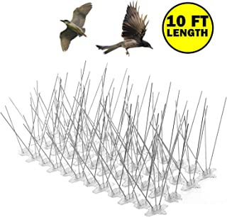 Bird Spikes for Small Birds Pigeons Cats,Covers 10 Feet Lenght/5 Inches Wide,30 Spikes Per Feet,Flexible UV-Proof Polycarbonate Base,Modular Pack to Cover Defferent Areas