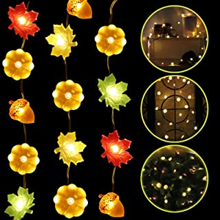 Decoration String Lights - 10ft Waterproof Lights with 30 LEDs for Valentine's Day Deco Home...