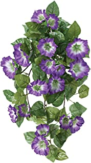 Best silk hanging plants Reviews