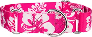 Country Brook Petz 1 1/2 Inch Martingale Dog Collar - Hawaiian Collection