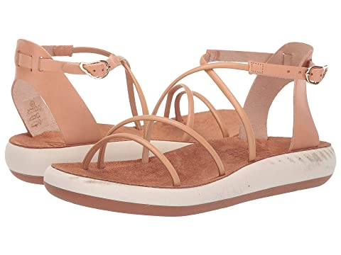 c46be197aff8d Ancient Greek Sandals Anastasia Comfort at Luxury.Zappos.com