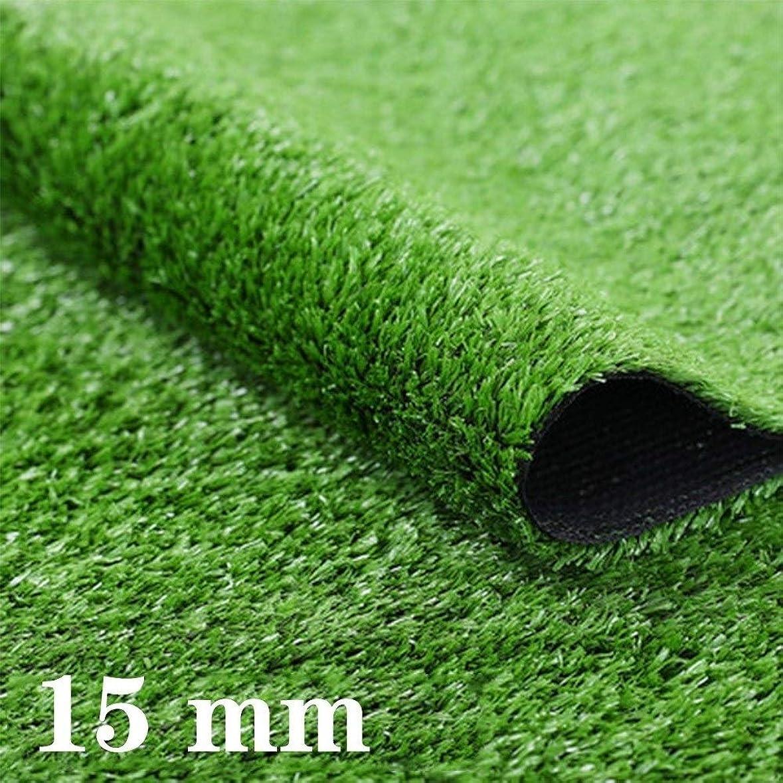 まどろみのある直立誇張GAPING 人工芝、人工芝、ソフトな風合い、高さ15 Mm、屋内外の風景に最適、2色から選択可能 (Color : A 2x0.5m)