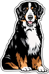 WickedGoodz Sitting Bernese Mountain Dog Decal - Dog Breed Bumper Sticker - for Laptops Tumblers Windows Cars Trucks Walls - Full Color