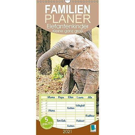 Geschenkset Inhalt: 1x Kalender 1x Weihnachts- und 1x Gru/ßkarte insgesamt 3 Teile Elefantenzauber DIN A5 Tischkalender f/ür 2021 Elefanten