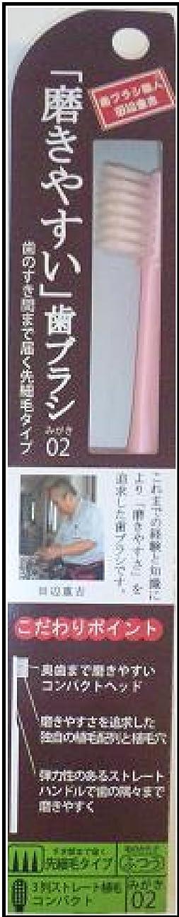 方程式洗練された求人磨きやすい歯ブラシ(先細) 1P*12本入り