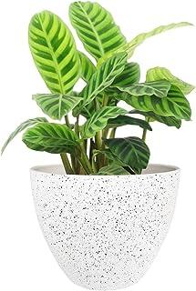 گلدان های گلدان در فضای باز باغ های داخلی ، ظروف گیاهی رزین با سوراخ زهکشی ، لکه های سفید (8.6 اینچ ، 1 بسته)…