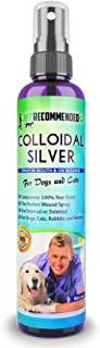 colloidal silver for dogs ears