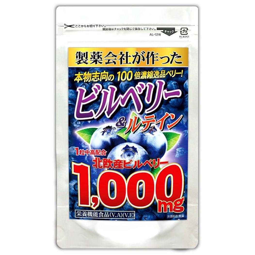 チャレンジポインタ符号ビルベリー1,000mg(大容量約6ヵ月分/180粒)