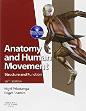 Best anatomy and human movement Reviews