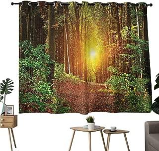 Brandosn Image Darkening Curtains Grommet Curtain Darkening Blackout Forest,Pathway to Timberland Darkening/Blackout W63 x L72