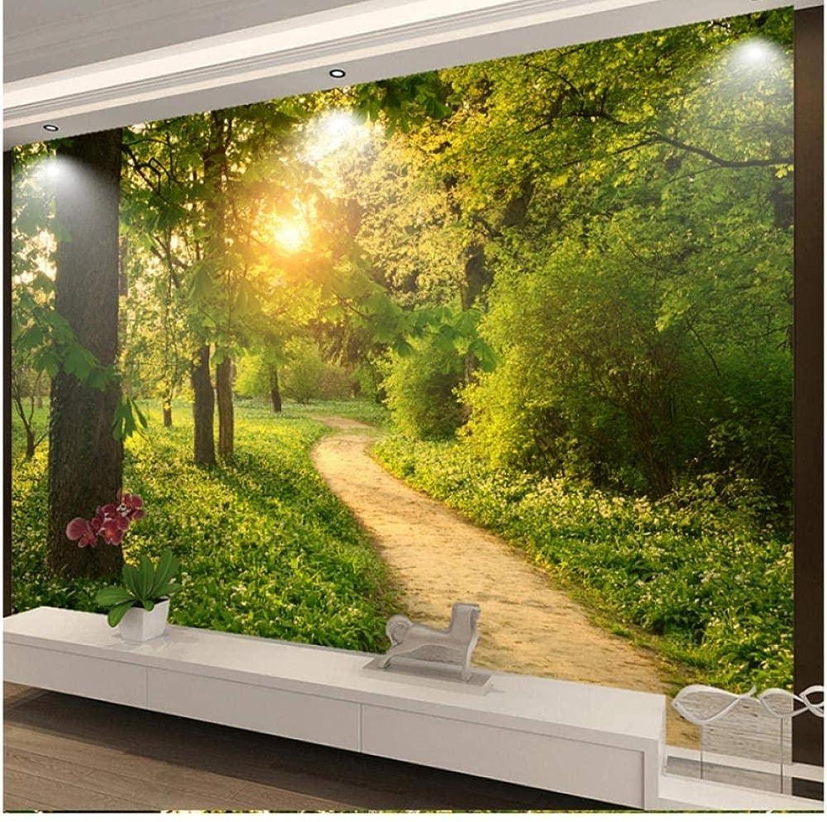 かかわらずバラエティレビューLjunj カスタム写真壁画3D壁紙現代高速道路日の出Hd壁画リビングルームベッドルーム家の装飾-200X140Cm