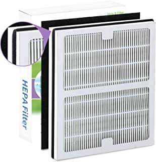 Replacement Idylis B Air Purifier Filters for Idylis Air Purifiers AC-2125, AC-2126, IAP-10-125, IAPC-40-140, IAP-10-150, IAP-10-050, Model # IAF-H-100B,Includes 1 HEPA & 1 Carbon Filters