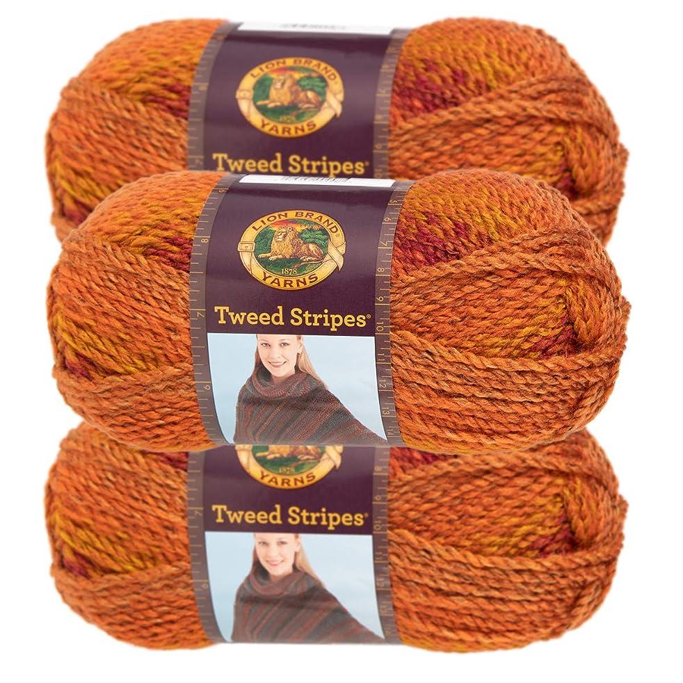 Lion Brand Yarn (3 Pack) Chunky Yarn Acrylic 100 Percent Soft Yarn for Knitting Crocheting Bulky #5