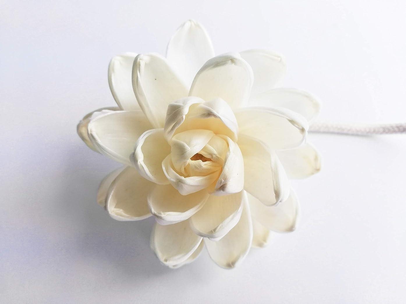 チロ純粋に司教MAYA フラワーディフューザー ソラフラワー ロータス (8cm) [並行輸入品] | Aroma Flower Diffuser Sola Flower - Lotus