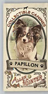 2019 Topps Allen and Ginter Collectible Canines Mini #CC-14 Papillon MLB Baseball Trading Card