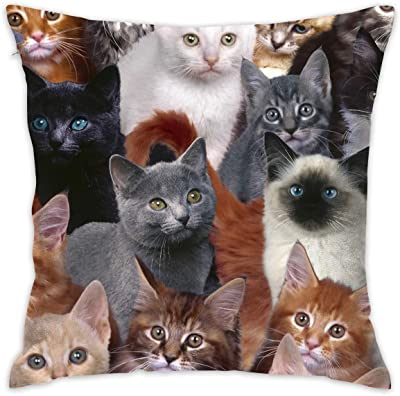 Supersoft Throw Pillow Covers Home Concealed Zipper Cushion Cover Cat Kitten Lovely Wrinkle Resistant Pillow Cases