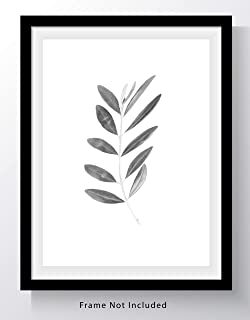 Olive Branch with Leaves Botanical Wall Art Print - 11x14 UNFRAMED, Minimalist Modern Black & White Decor - A Neutral, Contemporary Look for Any Room
