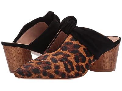 Bernardo Finley (Leopard Haircalf/Black Suede) Women