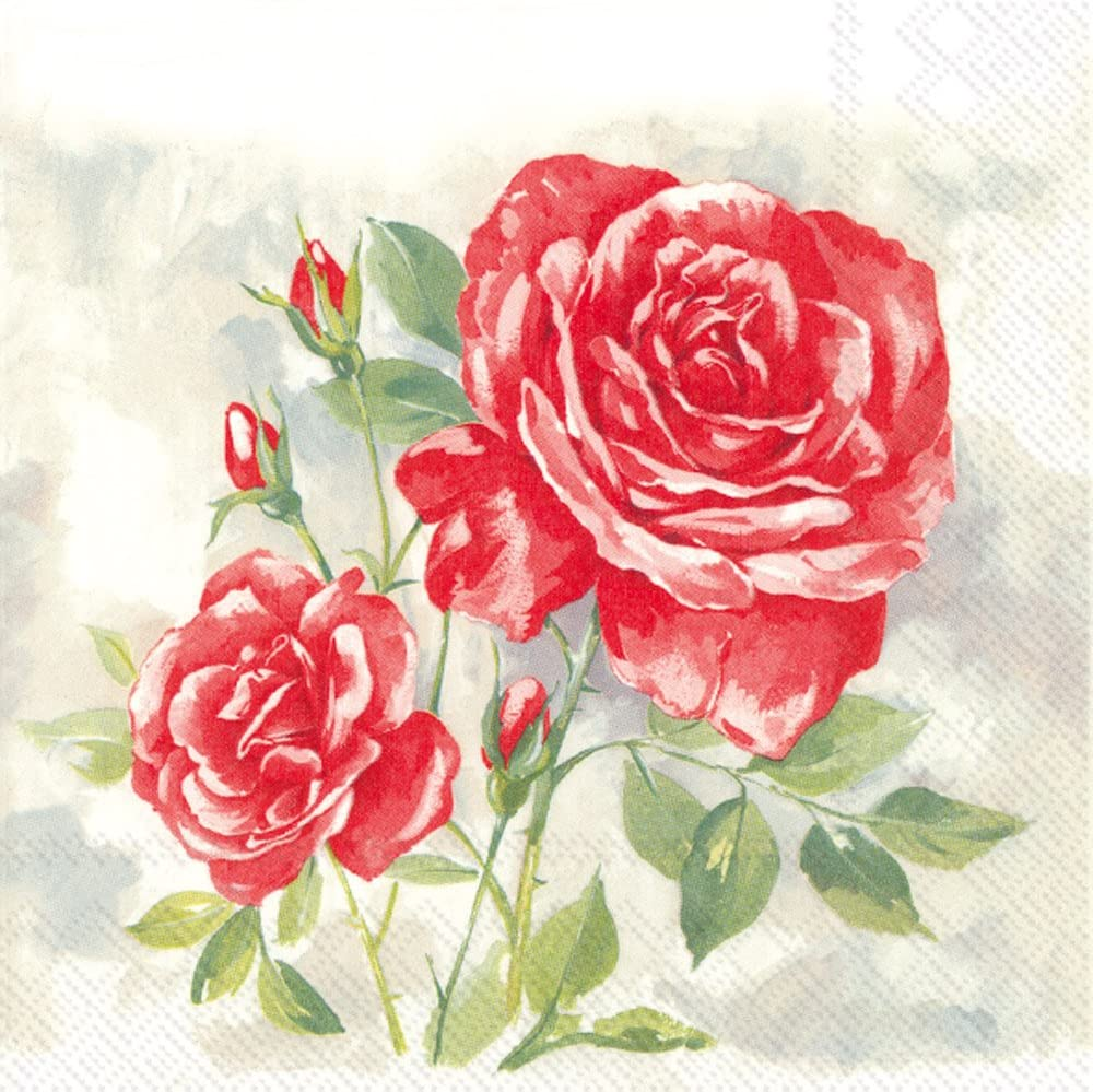 Celebrate the Home Spring new work Rose Boutique All items in store Napkins R Cocktail Paper 3-Ply