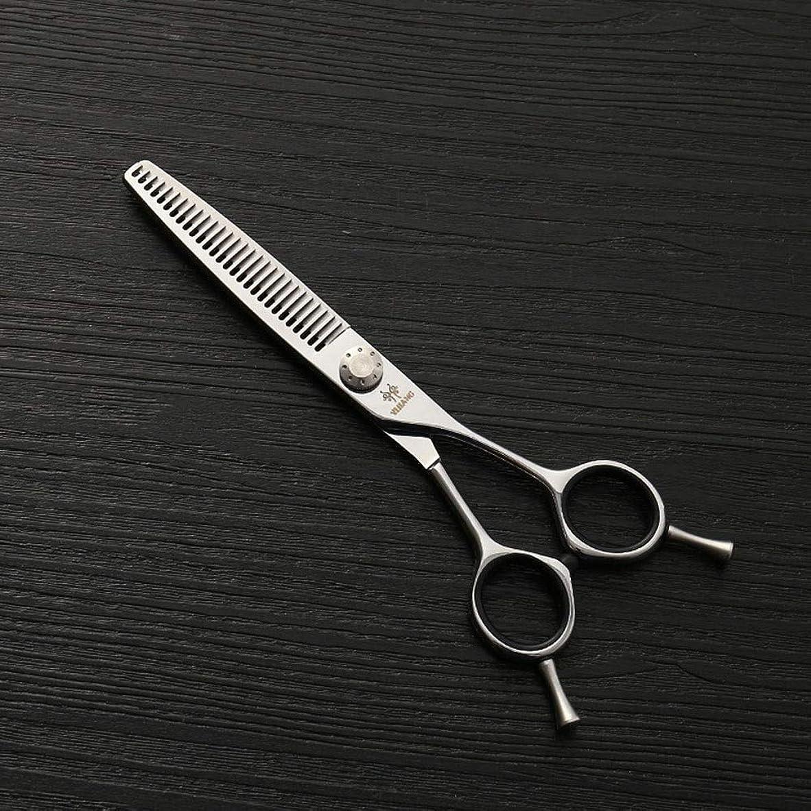 予防接種する神学校グリット6インチの美容院の専門のステンレス鋼の毛の切断用具はさみ、細い歯の切断の魚骨はさみ モデリングツール (色 : Silver)