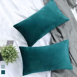 Best 12x20 lumbar pillow cover Reviews